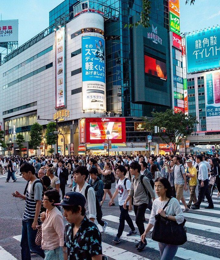 去日本旅遊,日本當地旅行團值不值得報